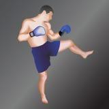 Kickboxer. Taekwondo fighter.Vector illustration.On isolated background Royalty Free Stock Images