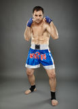 Kickboxer in guard stance Stock Images
