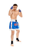 Kickboxer in guard stance Royalty Free Stock Images