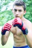 Kickboxer i röda handskar Fotografering för Bildbyråer
