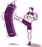 Kickboxer Man Stock Photo