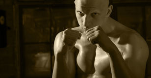 Kickboxer portrait with his fists Royalty Free Stock Images