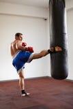 Kickboxer utbildning med slagpåse royaltyfria foton