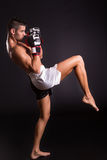 Kickboxer Stock Image