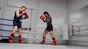 Kickboxers战斗火车体育圆环锻炼会议 股票录像