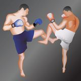 Kickboxers. Taekwondo fighters.Vector illustration.On isolated background Royalty Free Stock Images