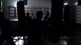 Kickboxers, das für Wettbewerbe sich vorbereitet Langsame Bewegung stock video