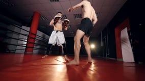 Kickboxers Muttahida- Majlis-E-Amalkämpar som boxas och att öva för den stora kampen långsam rörelse lager videofilmer