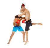 Kickboxers sparring na bielu Zdjęcie Royalty Free