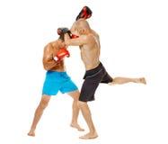 Kickboxers sparring na bielu Zdjęcia Royalty Free