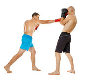 Kickboxers sparring on white Stock Photo