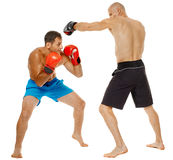 Kickboxers sparring on white Royalty Free Stock Photos