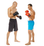 Kickboxers sparring on white Stock Images