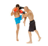 Kickboxers sparring on white Stock Photography