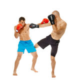 Kickboxers sparring on white Stock Image