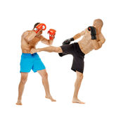 Kickboxers sparring on white Royalty Free Stock Image