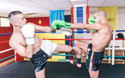 Kickboxers training on the ring Stock Photos