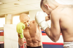 Kickboxers training on the ring Stock Images