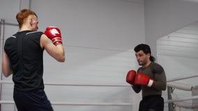 Kickboxing教练员展示和解释运动员腿打击技术在圆环踢 影视素材