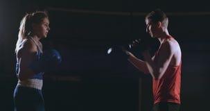 Kickboxing λεωφορείο αθλητών γυναικών Kickboxer που εκπαιδεύει τους θηλυκούς φίλους ικανότητας που εγκιβωτίζουν punching την απόλ φιλμ μικρού μήκους
