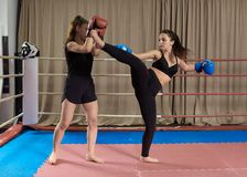 Kickboxing girls sparring. Female kickboxers sparring in the ring royalty free stock image