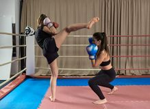 Kickboxing girls sparring. Female kickboxers sparring in the ring stock image