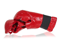 Kickboxing gloves Stock Image
