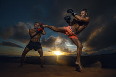 Kickboxing Stock Images