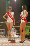 Kickboxing trophy. At Superkombat Final Elimination, october 15, Piatra Neamt Royalty Free Stock Photo