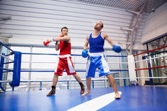 Kickboxing. Royalty Free Stock Photography