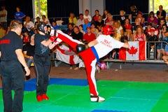 kickboxing värld för 3rd mästerskap 2011 Royaltyfri Foto