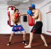 Kickboxvechters die in de gymnastiek sparring Royalty-vrije Stock Afbeelding