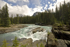 The Kicking Horse River Stock Images