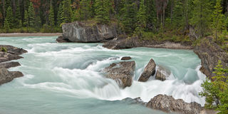 Kicking Horse River at Natural Bridge. The Kicking Horse River flows into the Natural Bridge Royalty Free Stock Image