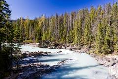 Kicking Horse River, Yoho National Park, Alberta, Canada Royalty Free Stock Images