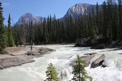Kicking Horse River in Yoho National Park Royalty Free Stock Images