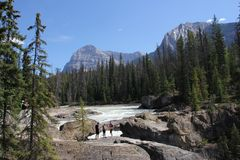 Kicking Horse River in Yoho National Park Royalty Free Stock Photos