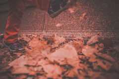 Kicking leaves Royalty Free Stock Images
