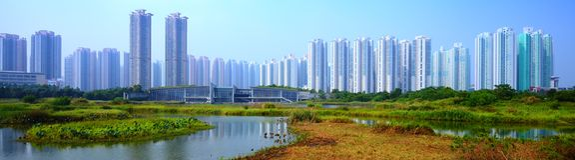 Hong Kong våtmark parkerar Royaltyfria Foton