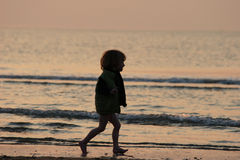Kid. Child  walking on the beach Stock Images