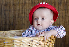 Kid. The wonderful kid in a red cap and in a basket Stock Photo