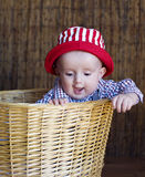 Kid. The wonderful kid in a red cap and in a basket Royalty Free Stock Photography