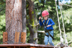 Kid at adventure park. Active brave little boy enjoying climbing at treetop adventure park Stock Photo