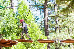 Kid at adventure park. Positive little boy climbing at outdoor treetop adventure park being active and healthy Stock Photo