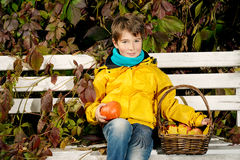 Kid and autumn royalty free stock photos
