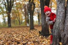 Kid in autumn park hidden behind tree Royalty Free Stock Image