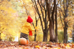 Kid in autumn park with pumpkin Royalty Free Stock Images