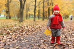 Kid in autumn park. Walk with family and smile Stock Photography