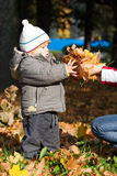 Kid in autumn wood Royalty Free Stock Images