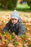 Kid in autumn wood Stock Photo